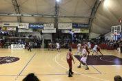 nardo-costa-orlando-basket