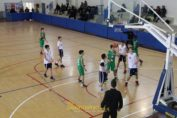 caroli-hotels-basketaball-cup