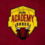basket-academy-nardo-logo